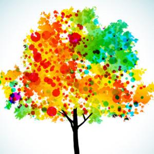 coloradochiropractortree